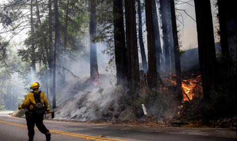 Пожарите в Калифорния се разрастват, няма пострадали българи