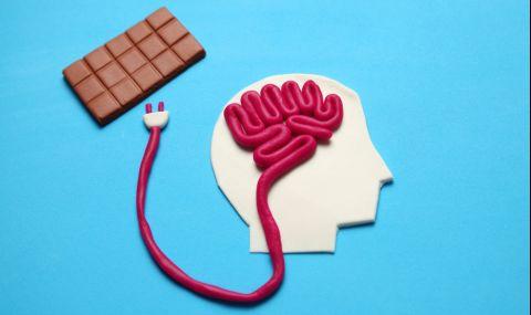 Учени: Консумацията на какао подобрява работата на мозъка
