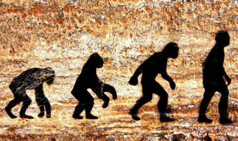 В Турция няма да учат за еволюцията. Теорията на Дарвин била спорна