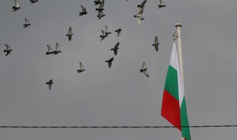 Какво разплака тази жена при аплодисментите за българските медици (ВИДЕО)