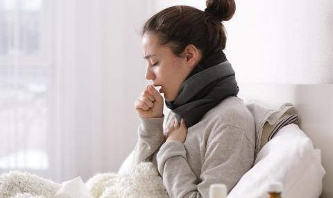 Заложете на по-леки храни, когато боледувате (ВИДЕО)