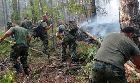 Над 50 души гасят горския пожар в Кирково - 1