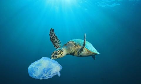 Екологичен апокалипсис! Морското дъно е осеяно с 14 милиона тона микропластмаса