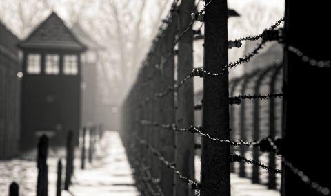 Защо едно младо момче доброволно отива в Аушвиц?
