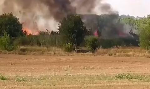 Пламна нов пожар край Хасково