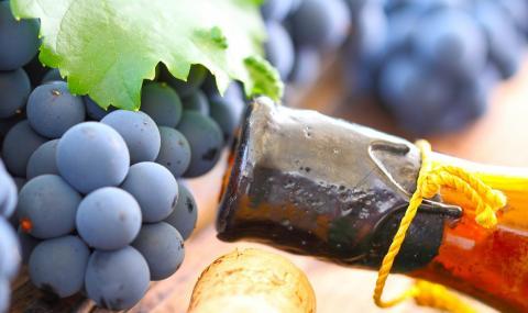 Намериха следи от най-старото вино в света