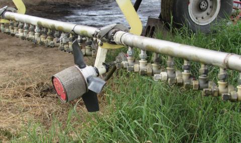 Хвърлят 2 млн. лв. за борба с комарите по Дунав