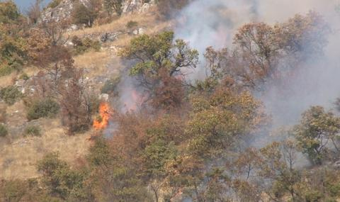 Пожарът стигна Свиленград, извънредно положение в 4 общини