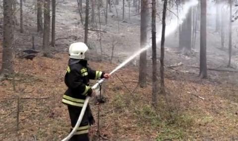 Огромни пожари горят в Сибир