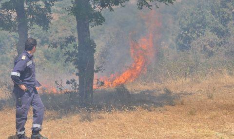 """Горя пожар в защитената територия """"Калиакра"""" - 1"""