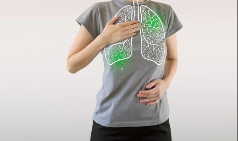 6 храни, които пазят белите ни дробове