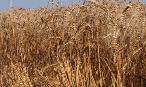 С близо 2.9 млрд. лв. подпомагат земеделците