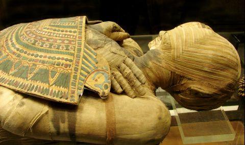 Откриха мумия със златен език в Египет