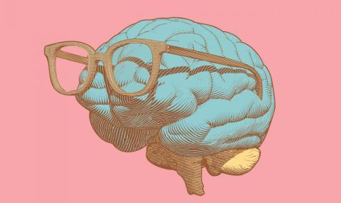 3 части на тялото издават колко сте интелигентни