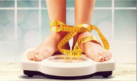 Смятаме тези храни за диетични, но от тях се пълнее