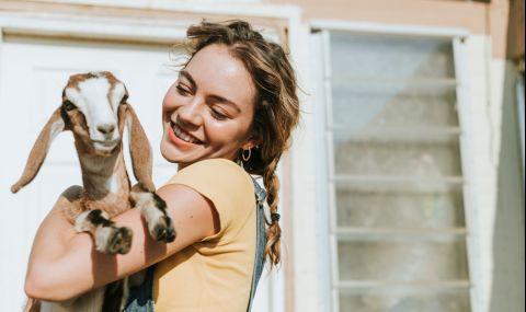 Жена изкара 50 000 паунда от козите си с онлайн срещи