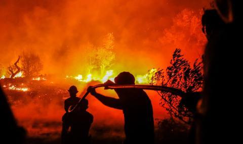 Страшни пожари в Португалия