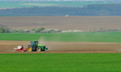 Пшеничните посеви са в критично състояние заради сушата