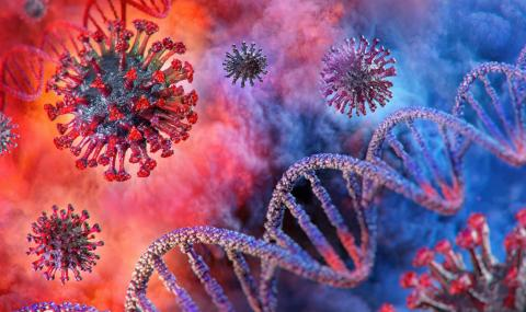 """САЩ: В """"Джонс Хопкинс"""" дешифрират генома на коронавируса"""