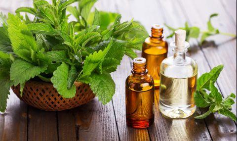 4 доказани ползи от ментовото масло