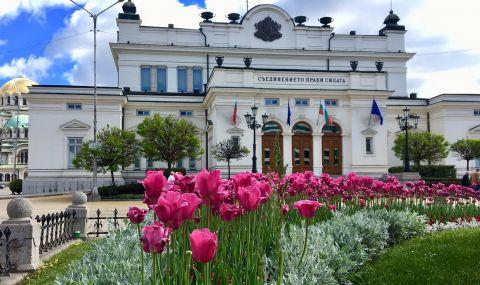 Първата комисия в новия парламент започна работа - 1