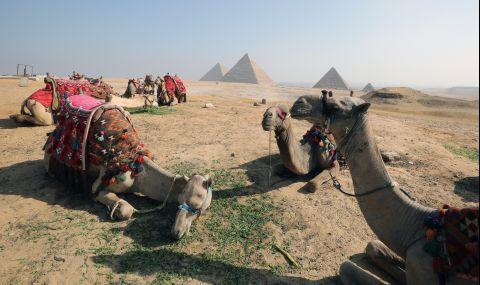 Египет ще произвежда