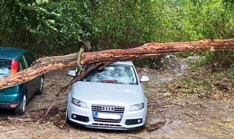 Бурята в Ловеч потроши луксозна лимузина - 1