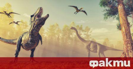 Палеонтолози откриха неизвестен досега вид динозавър с необичаен външен вид.