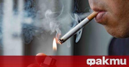 """""""Ние направихме изследване по темата за тютюнопушенето сред младите хора."""