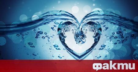 Сърдечната недостатъчност е състояние при сърдечно заболяване, при което независимо