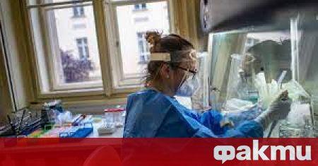 Вчера бяха регистрирани 3 556 нoви случая на коронавирус от