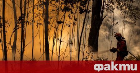 Самолет Canadair CL-600, участвал в потушаването на горски пожар между