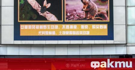 Молекулярни биолози от Хонконг са отгледали първите изкуствени аналози на