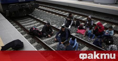 В приемните центрове за мигранти в Сърбия в момента има