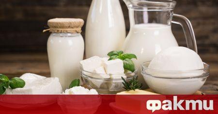 Млечните продукти присъстват в менюто на почти всеки. От известно