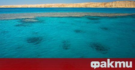 """От 1 март остров Сардиния става единствената """"бяла"""" зона в"""