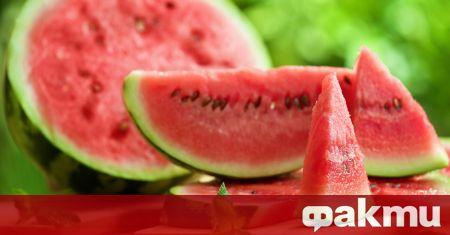 Динята е любим плод на малки и големи. Ако и