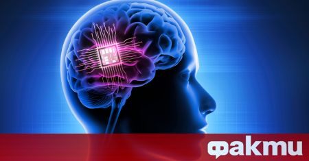 Американски стартъп, наречен Synchron, вече е получил одобрение от отговорните