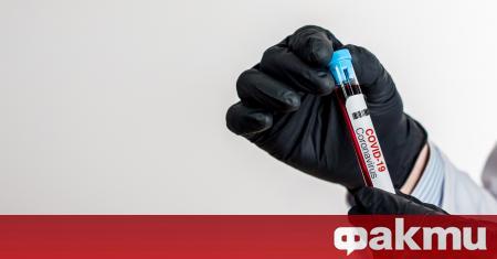 Ваксина срещу коронавируса ще има още тази година в някои