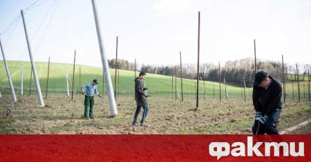 Европейски представители отправиха призив за закрила на сезонните работници в