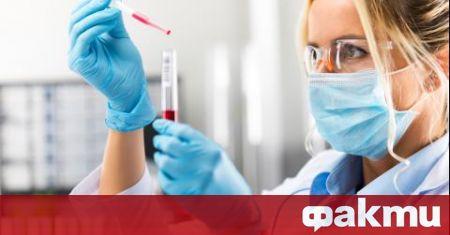 Учени от БАН тестват българска ваксина срещу COVID-19 върху хуманизирани