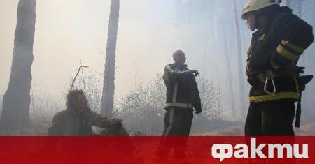 Горските пожари в забранената зона около Чернобилската АЕЦ в Украйна