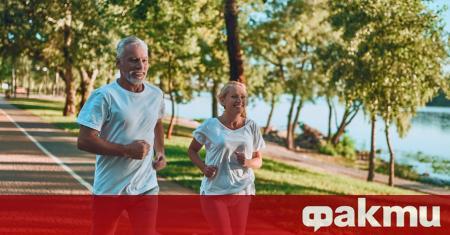 Физическата активност влияе благоприятно на сърцето, на мозъка, тя допринася