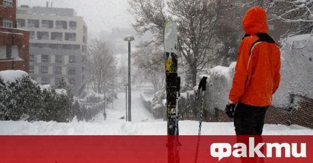 Властите в испанската столица започнаха да разчистват отпадъците, падналите дървета