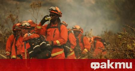 Пожарникари се борят с мащабен горски пожар в Калифорния, който
