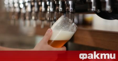 Знаем, че алкохолът е вреден. Що се отнася до бирата,