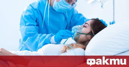 Изследователи от Медицинската школа Grossman в Нюйоркския университет изброиха ранните