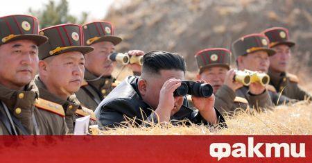 В Северна Корея има само един български (потенциален) гласоподавател за