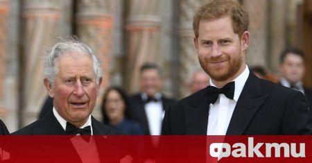 Принц Чарлз няма да може да попречи на децата на