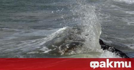 44-годишен свиленградчанин се е удавил в морето в Поморие. Инцидентът